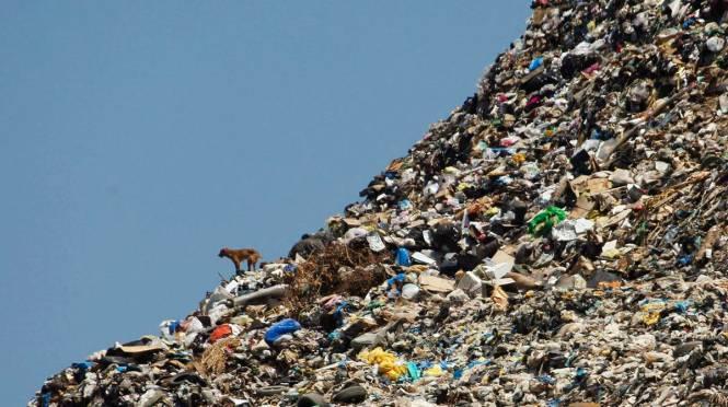 trash-dump